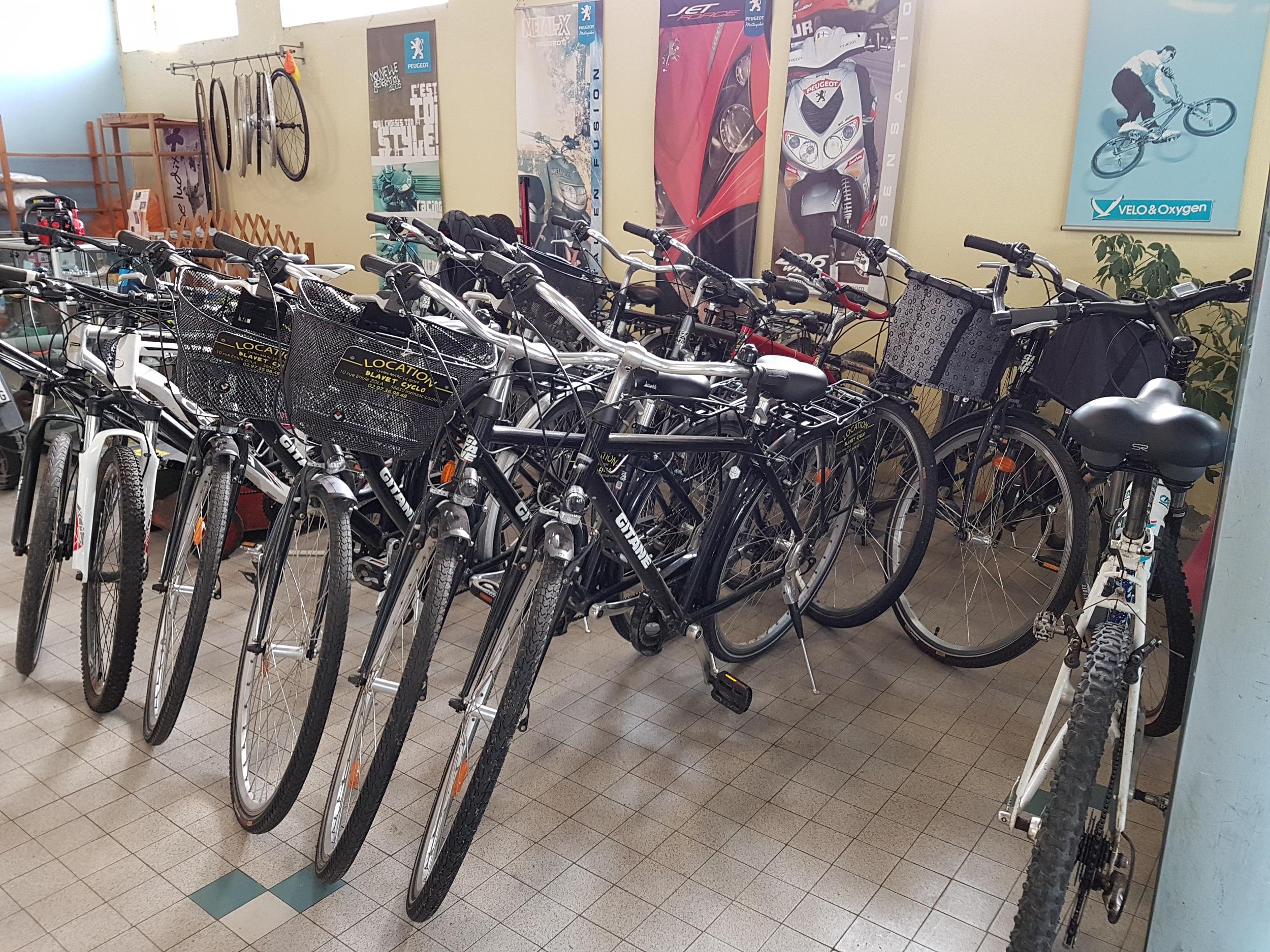 Location vélo; location morbihan; bretagne; groix