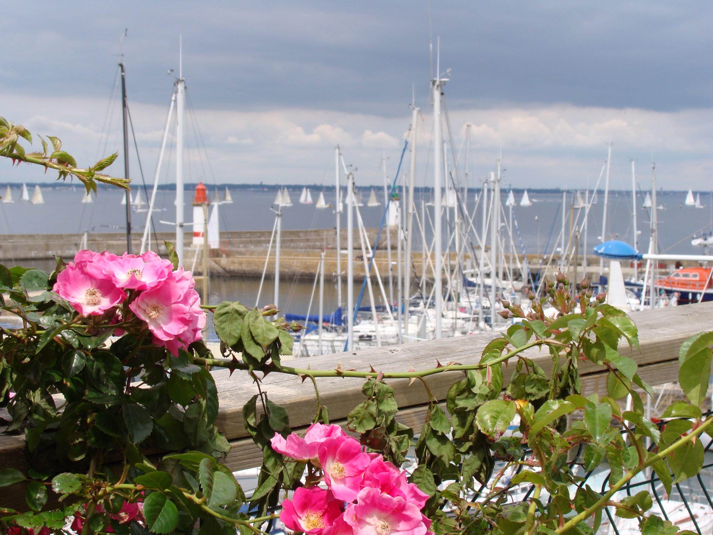 yourte Morbihan;roulotte bretagne;tipibretagnesud;cabane morbihan;Groix-7320