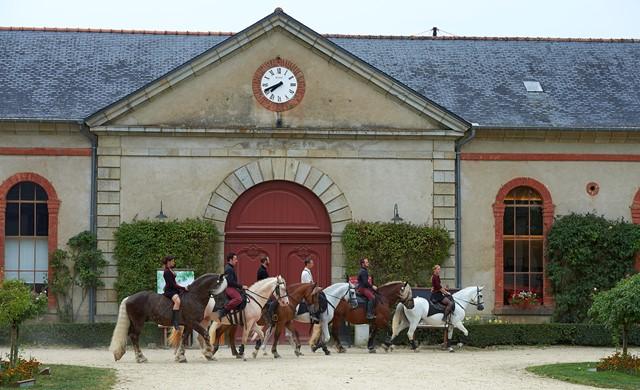 Espace decouverte Morbihan ; loisirs Bretagne ; Groix
