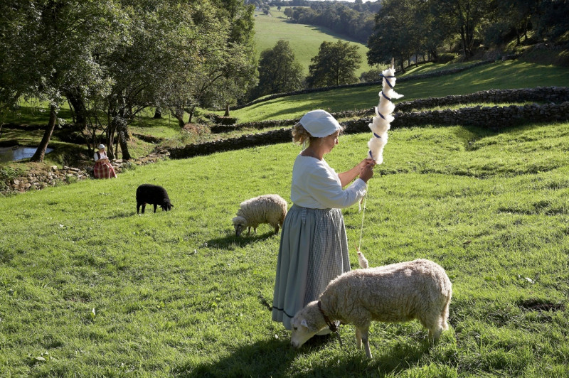 moutons-poul-fetan-photo-p-y-nicolas-57112