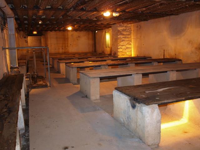 Visite guidee Morbihan - visite guidee Bretagne - Groix